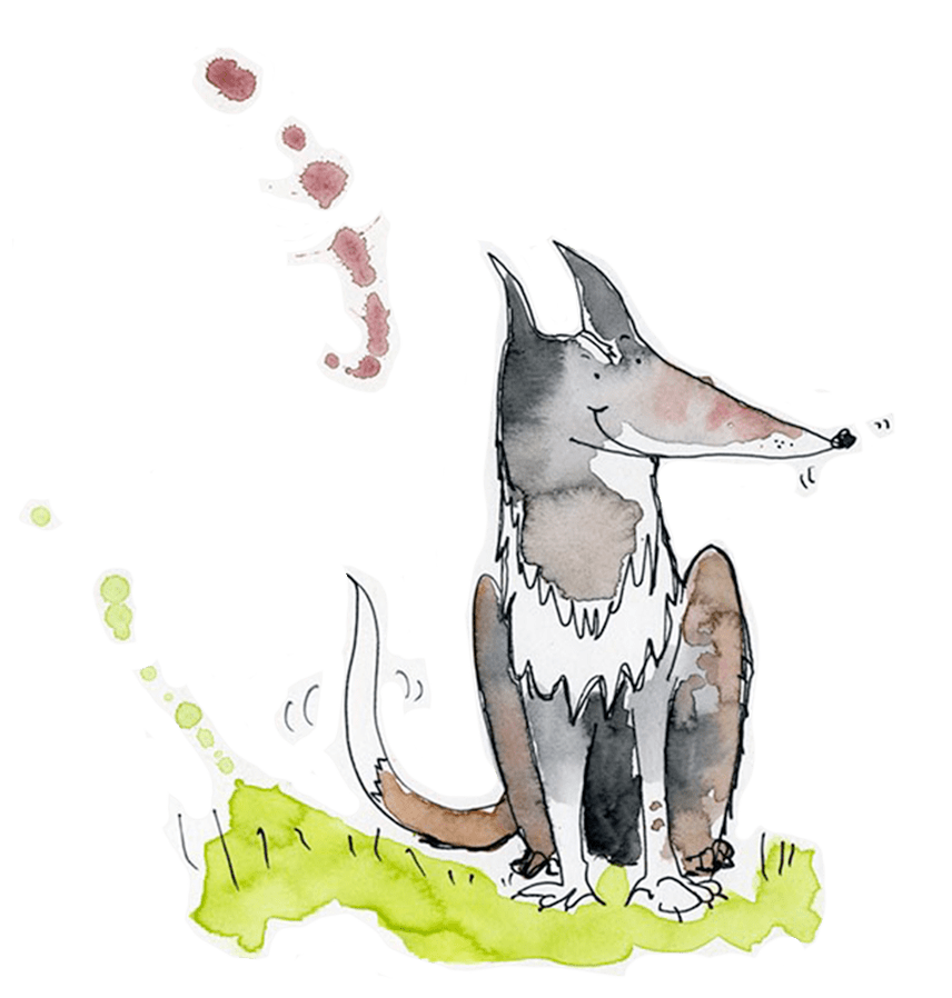 Britt Harcus illustration of dog